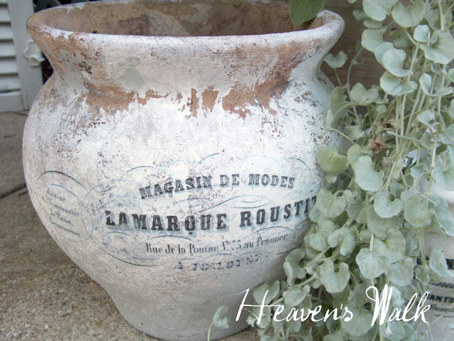 Aged terracotta pot by Heavens Walk